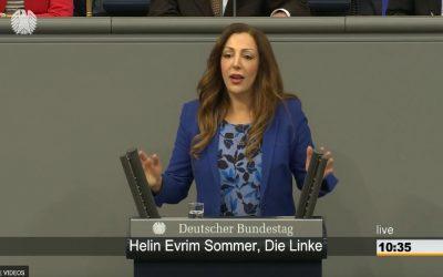 Zum entwicklungspolitischen Antrag der AfD. Rede im Bundestag am 05.04.19