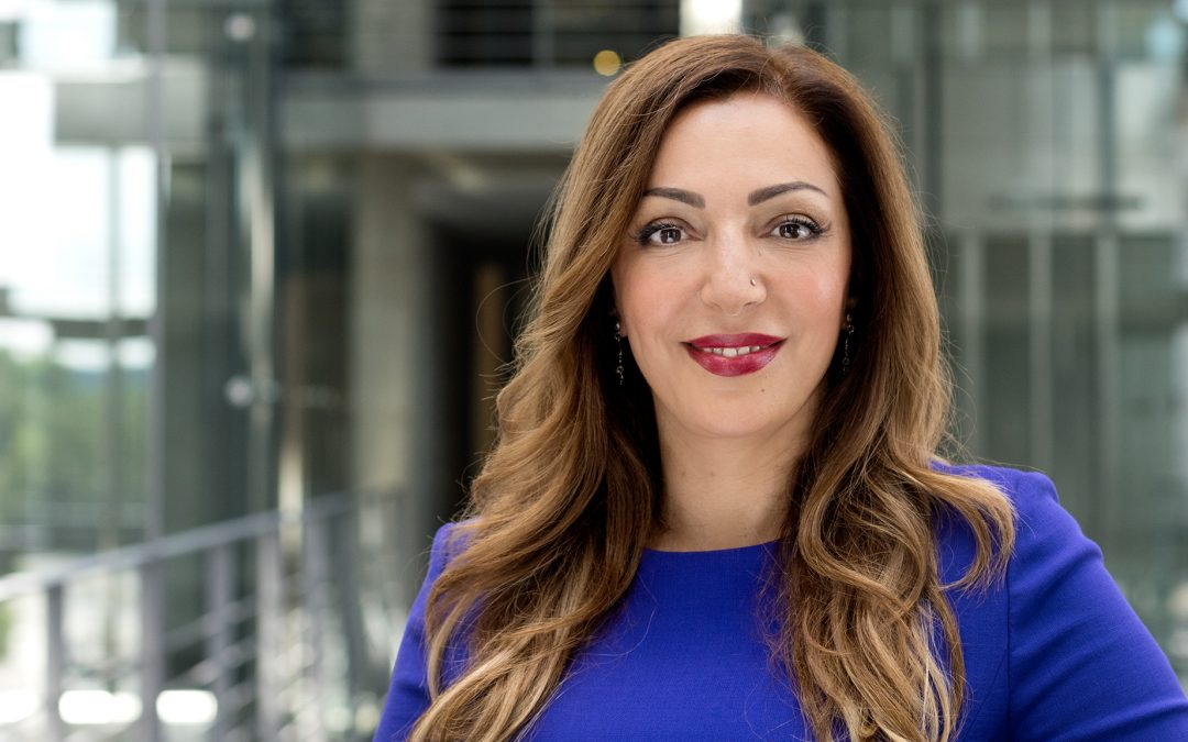 Interview auf dem Alumniportal Aserbaidschan zu meinen Erfahrungen im Bundestag und weiteren Themen