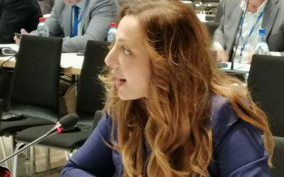 """Meine Rede auf der Jahrestagung der OSZE: """"OSZE FIRST statt nationalem Egoismus"""""""